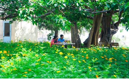 Góc học tập trong khuôn viên Thư viện